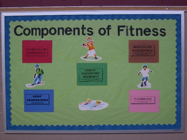 12 best 5 Components of Fitness images on Pinterest Pe ideas - components of fitness