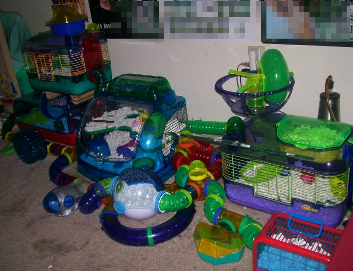 awesome cool hamster cage. Can you imagine cleaning it?