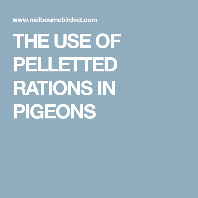 THE USE OF PELLETTED RATIONS IN PIGEONS