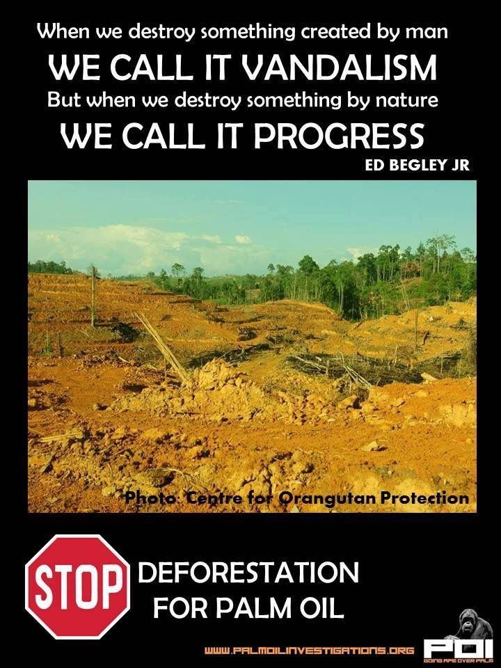 the problem of deforestation essay Afforestation is the establishment of a forest or stand of trees  the finding helps explain why deforestation in this region is linked with reduced rainfall.