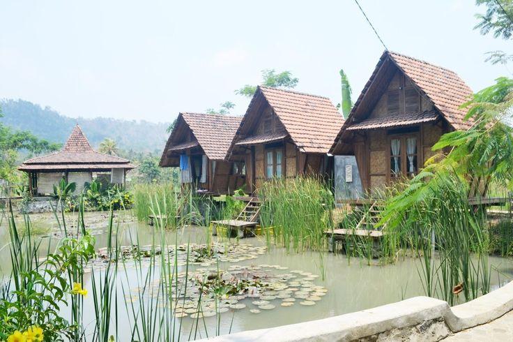 Wisata Khas Pedesaan Desa Boro