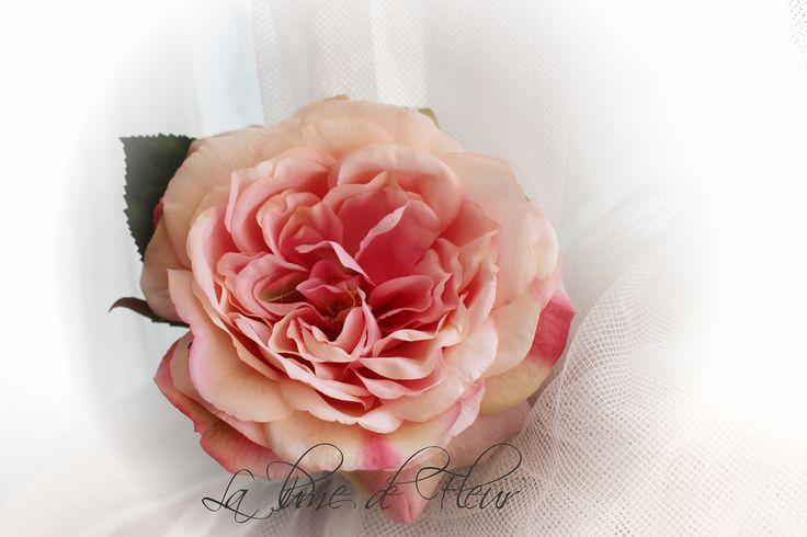 Sophia pink rose | See it used here:  https://www.flickr.com/photos/124757674@N08/14544232099/