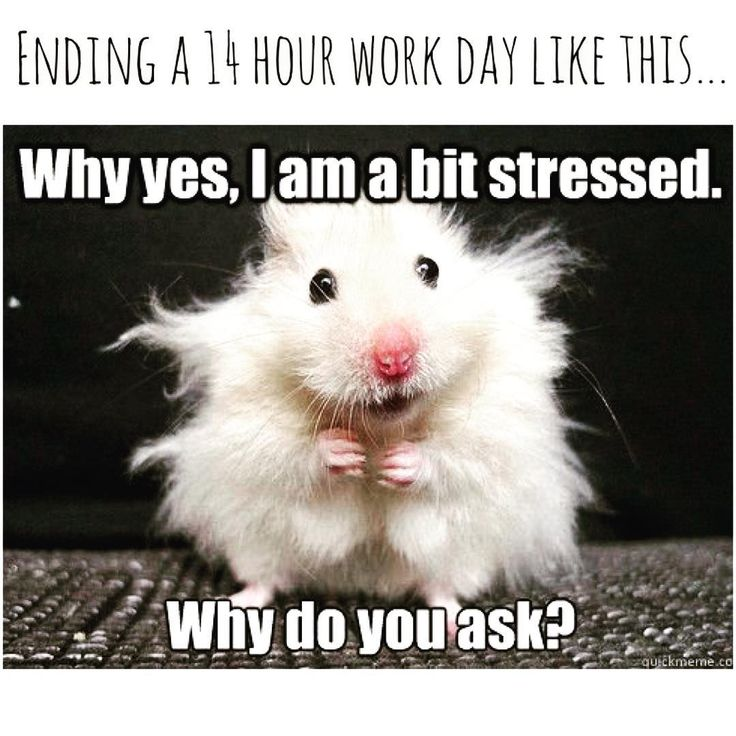 Funny Meme About Stress : Current feels work stress tired boss childcare