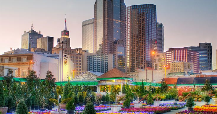 17 Reasons Why Living in Dallas is the Best | Entertainment | PureWow Dallas