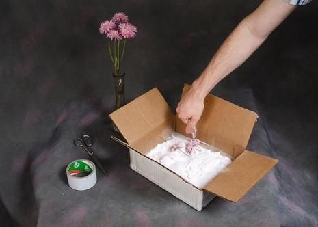 Preserving flowers with Borax