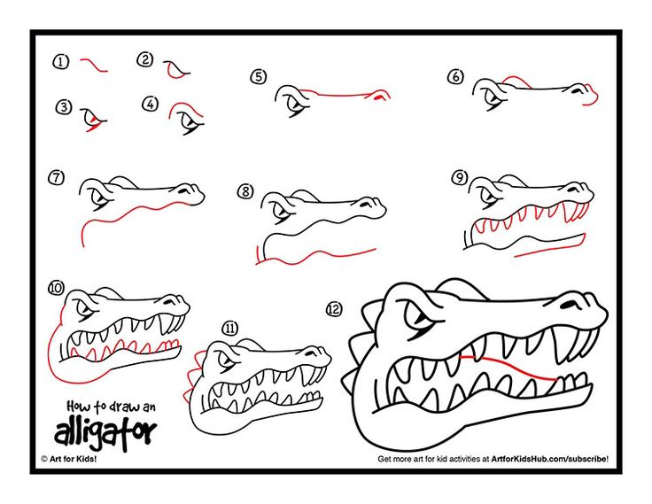 How To Draw An Alligator Artsy Ideas For Kids