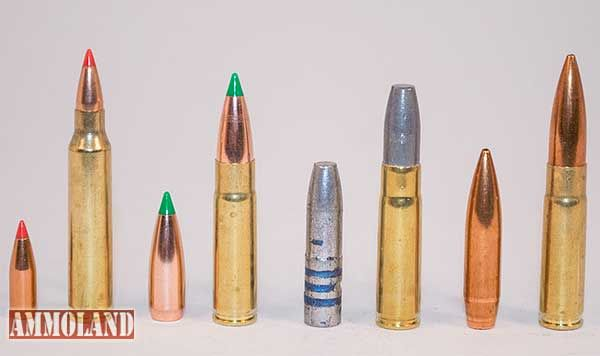 Celebrating diversity with the 300 AAC Blackout Cartridge