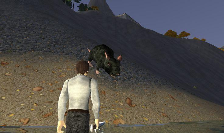 killing rat :P