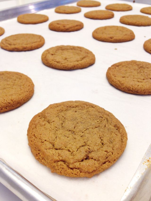 RECIPE: CHEWY GINGER SNAP WITH PUMPKIN ICE CREAM SANDWICHES with Rose ...