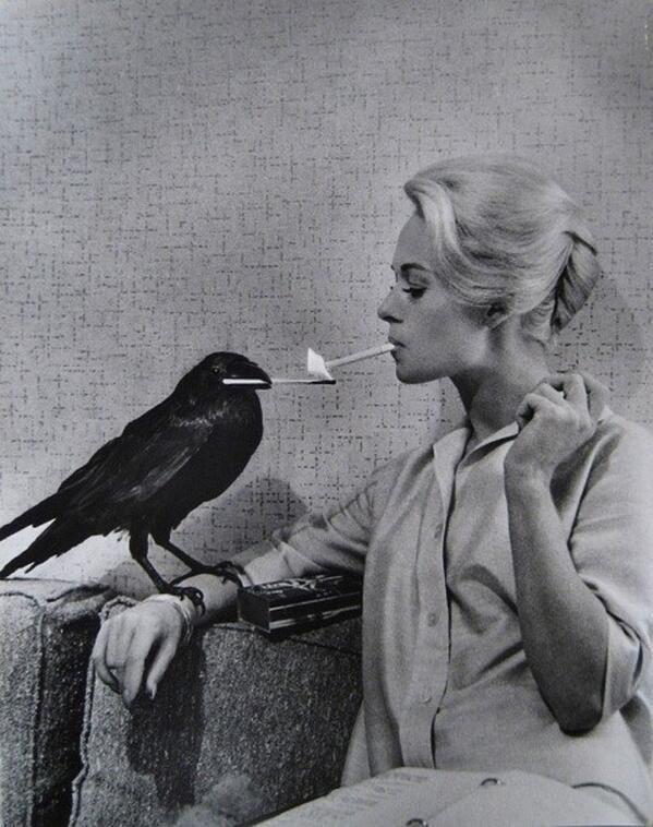 アルフレッド・ヒッチコック『鳥』を撮影中のティッピ・ヘドレン。                                                                                                                                                                                 もっと見る