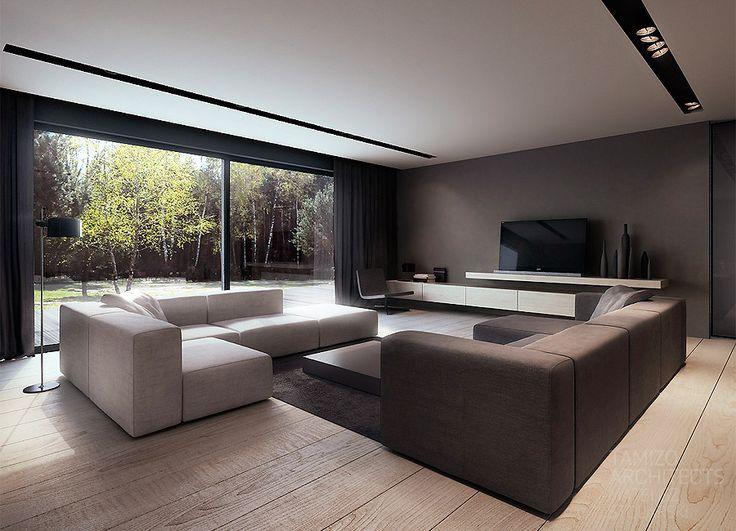 Y型住宅的室內設計,pabianice。