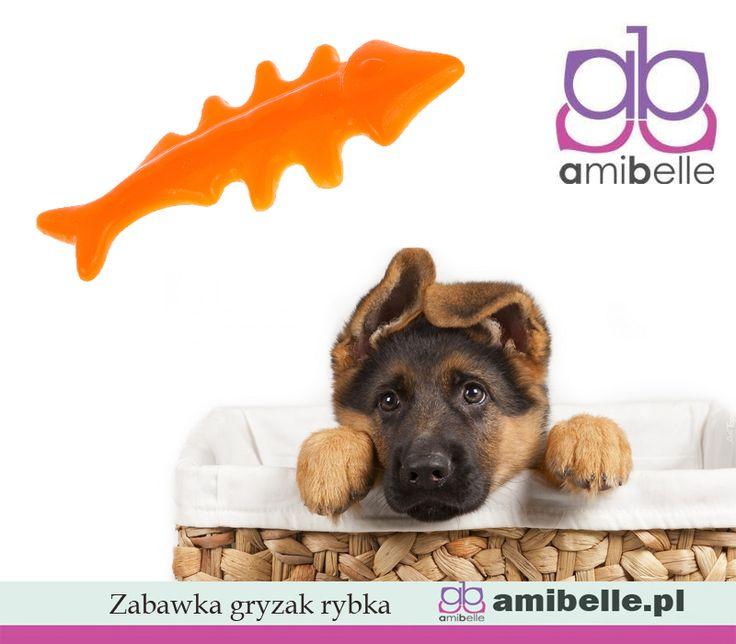 Dla wszystkich miłośników dobrej zabawy. Idealny na prezent. Gryzak w kształcie rybki:  🐠bezpieczna i ekologiczna guma (5x mocniejsza od tradycyjnej); 🐠w pełni bezpieczna dla psa, bardzo wytrzymała, 🐠średnica ok. 14 cm www.amibelle.pl