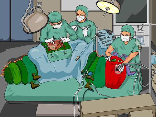 The Very Hungry Caterpillar undergoing gastric bypass surgery - Jim'll Paint It