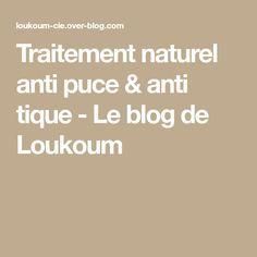 Traitement naturel anti puce & anti tique - Le blog de Loukoum