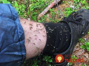 Už si na vás netrúfnu: Jednoduchý spôsob, ako si udržať komáre a muchy ďaleko od tela!