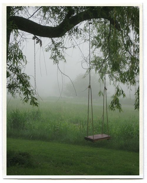 tree swing for solitary thoughts and swinging