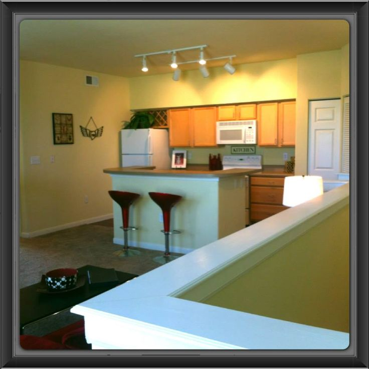 21 Best Springs At Winchester Road Apartments Images On