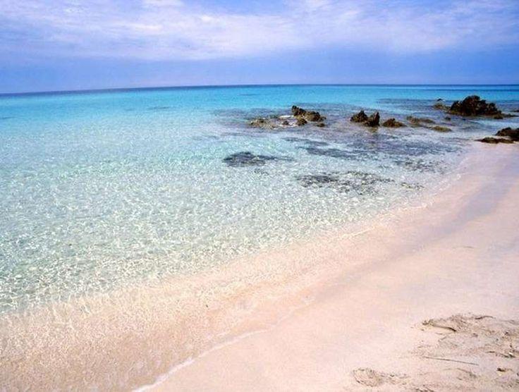 La Corse. La plage de Saleccia (Santo-Pietro-di-Tenda). L'étendue de sable fin de près d'un kilomètre n'est pas facile d'accès et c'est tant mieux : la plage est à l'abris de la foule de vacanciers.