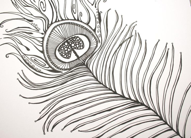 Proud As A Peacock . Original Pen and Ink Drawing ...
