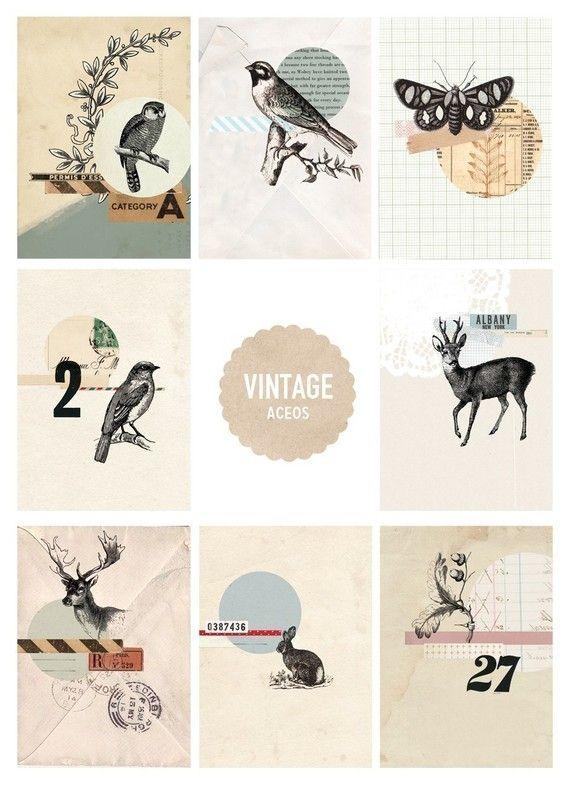TABITHA EMMA est une illustratrice australienne freelance, spécialisée en print et web.