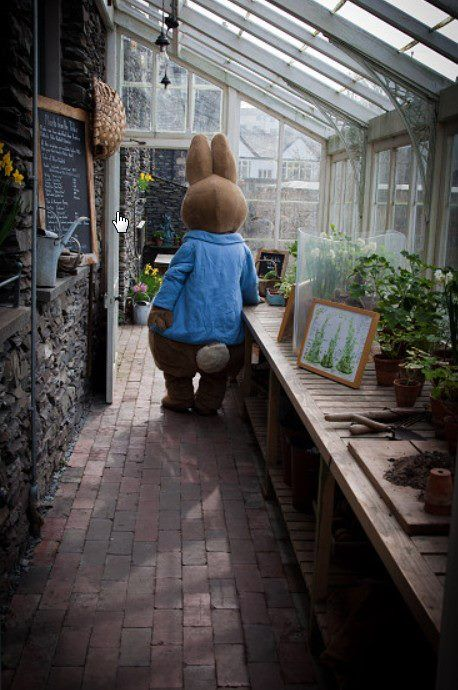 Deep in the heart of Windermere is the delightful Beatrix Potter exhibit. Take a tour or attend an event, you may even get to meet Peter http://www.hop-skip-jump.com/