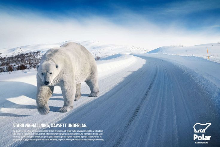 Polar – Made in Norrland