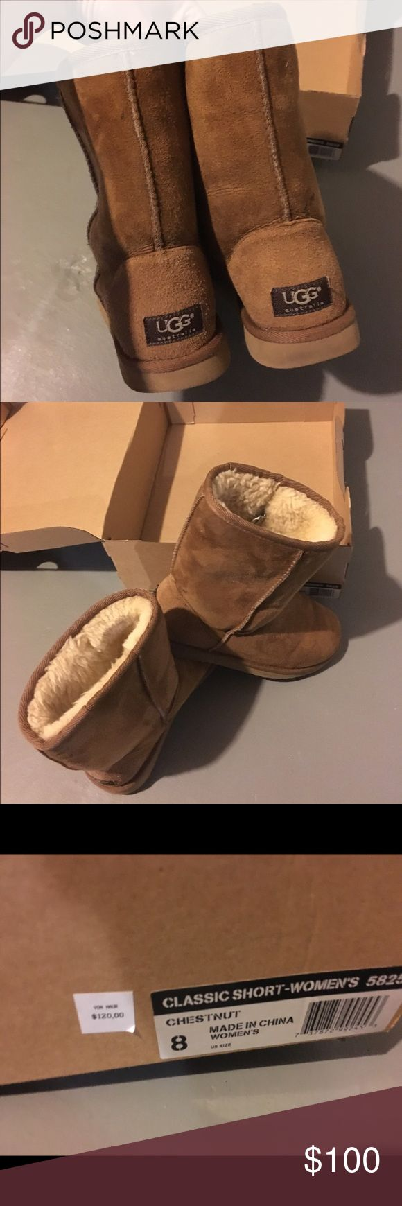 Short Classic Chestnut UGGs Short chestnut color UGG boots UGG Shoes Winter & Rain Boots