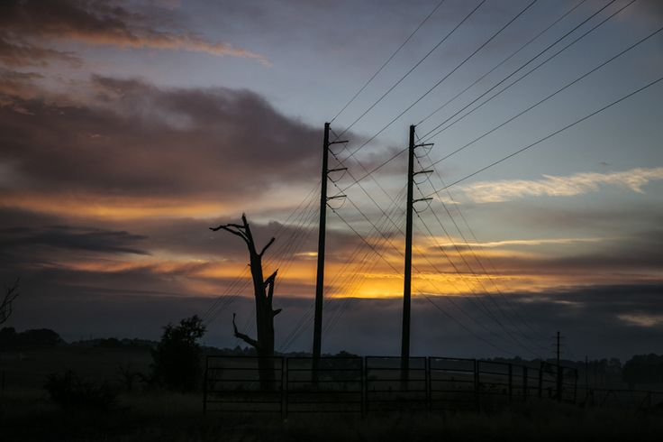 Sunrise telegraph poles