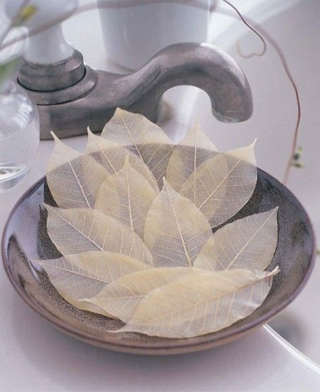 Make leaf skeletons (these are actually soaps, the directions to make the real skeletons are under the picture frame with leaf skeletons in it, the image won't pin for some reason)
