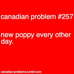 Canadian Problem - they never stay on! Also, when you prick your fingers a hundred times putting them on.