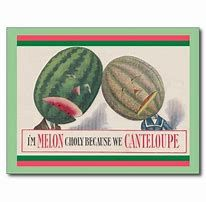 Image result for Images of Cantaloupe puns