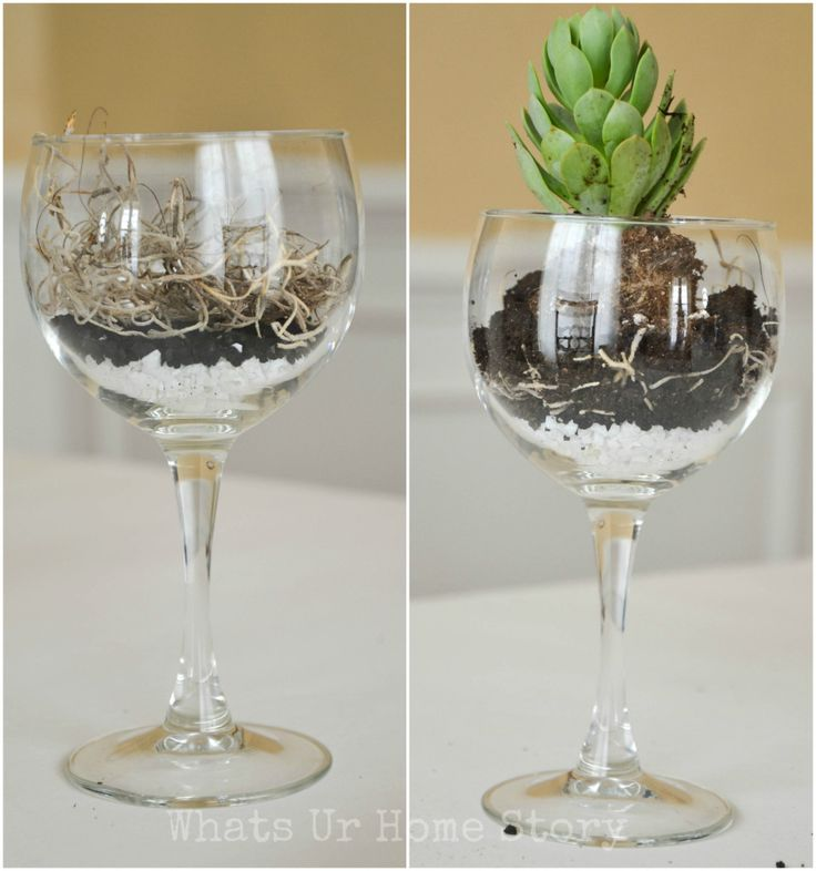 42 best succulent wine glass images on pinterest for Wine glass decorations for weddings