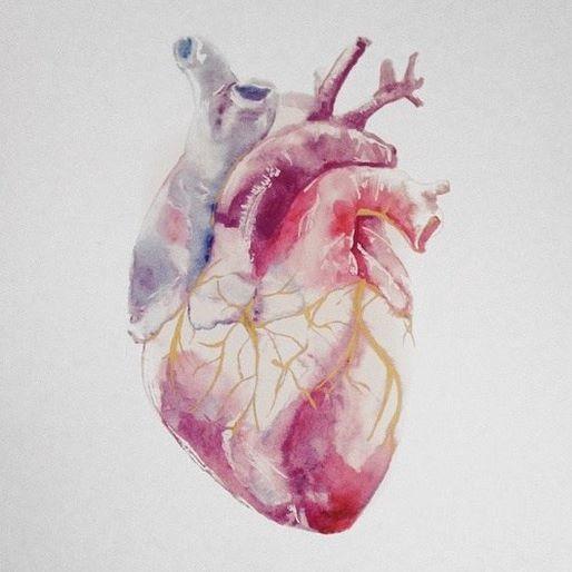Cardiology in Medical School || up now on the blog! #medschool #cardio #sssyrah