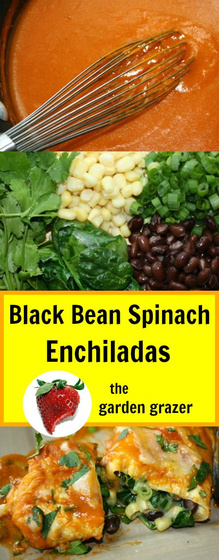 THESE enchiladas! They rock our world. Before now, it never occurred to me to make my own enchilada sauce but I'm SO glad I did. It's ...
