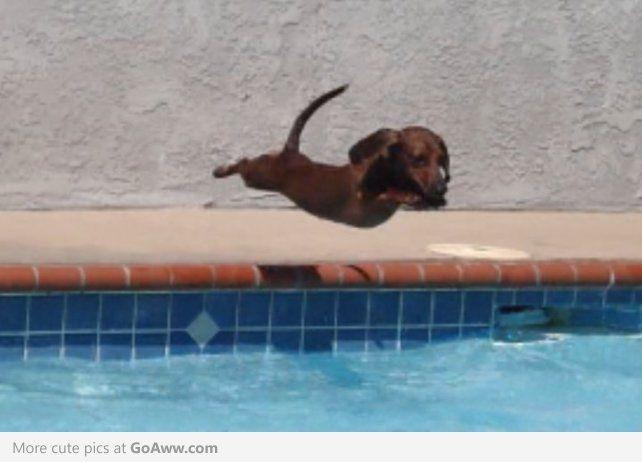 Baby Pool Water Bath Tub