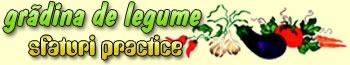 Ingrijire legume