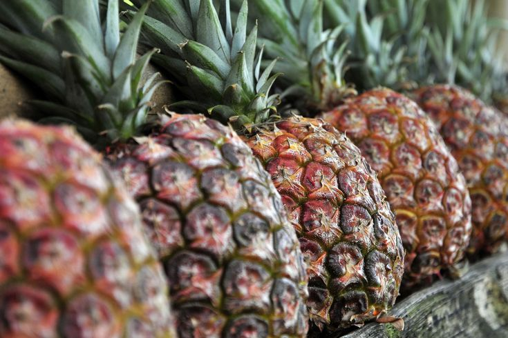 12 Unexpected Benefits of Pineapple You Need To Know?ref=pinp nn The summer is heating up, and the rising temperatures make me think of refreshing citrus. Pineapple tastes great in mixed drinks, doesn't it? Even when you nix the alcohol, pineapple is still a delicious fruit, and has many unexpected benefits you probably don't know about. Check out...