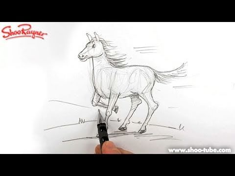 How to draw a Horse  - Spoken Tutorial