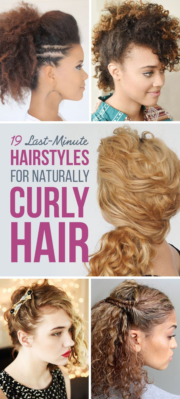 Phenomenal 1000 Ideas About Easy Curly Hairstyles On Pinterest Hair Tricks Hairstyles For Women Draintrainus