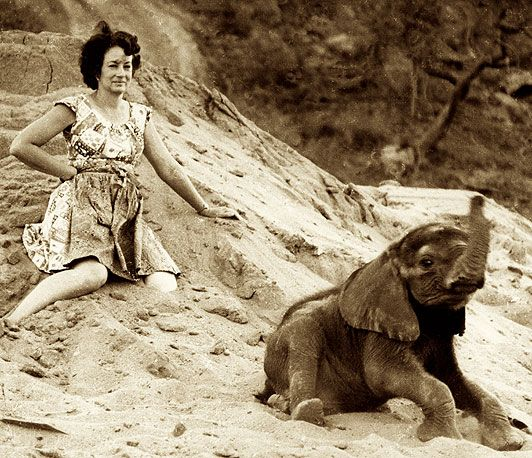 Dame Daphne Sheldrick. My hero.
