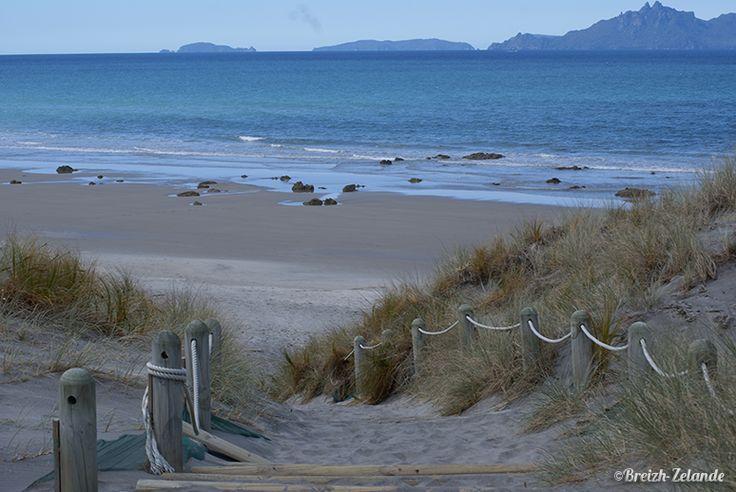 La plage de sable blanc de Mangawhai #Plage #NZ #Nature http://www.breizh-zelande.fr/mangawhai/