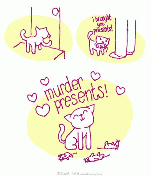 Cats...: Cats, Animals, Stuff, Funny, Crazy Cat, Murders, Murder Presents, Kitty, Cat Lady
