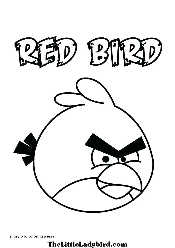 - Angry Birds Coloring Pages Coloring Pages Birds To Print In 2020 Bird  Coloring Pages, Coloring Pages, Coloring Books
