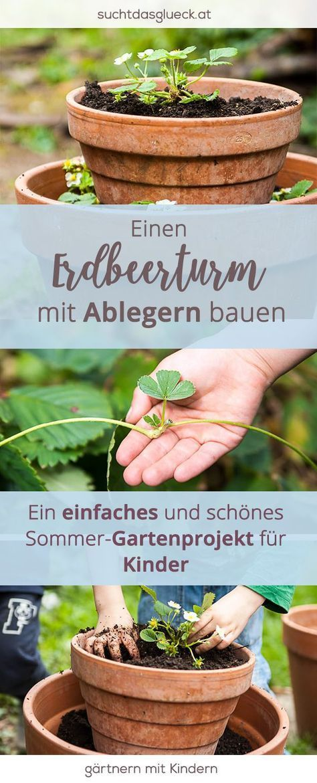 Gartenprojekt für Kinder: Einen Erdbeerturm bauen (mit eigenen Ablegern