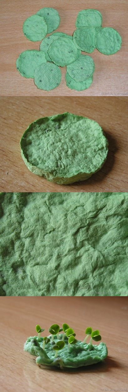 El papel plantable es una buena idea para regalar o para alegrar tus balcones y ventanas. Éste es un papel reciclado, elaborado artesanalmente, y que contiene semillas de albahaca. Basta humedecer el papel, ponerlo en una maceta con tierra y abono, mantenerla húmeda y a los pocos días... ¡sorpresa! Las semillas comienzan a germinar. Estas semillas de albahaca son de una variedad resistente, caracterizado por hojas verdes oscuras, brillantes y arqueadas, con un olor fuertemente aromático.