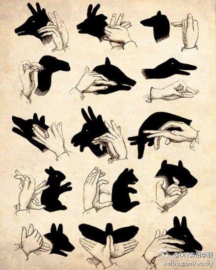 那么多的手影你都玩过吗?@晓冬知春