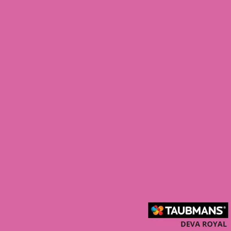 #Taubmanscolour #devaroyal