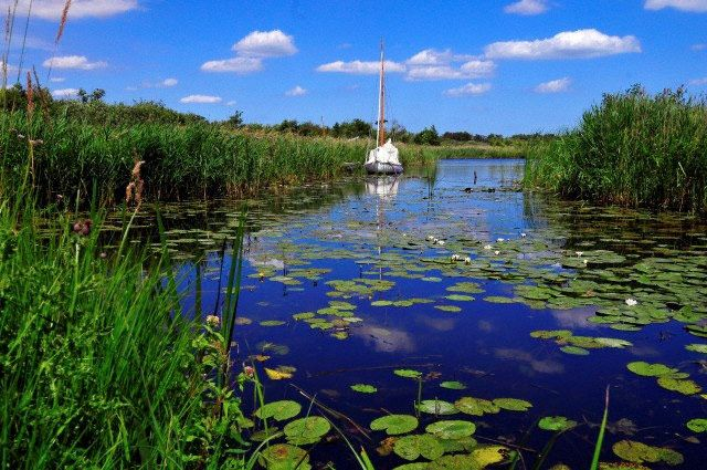 The Norfolk Broads in England [Photo: Kevin Simmonds]