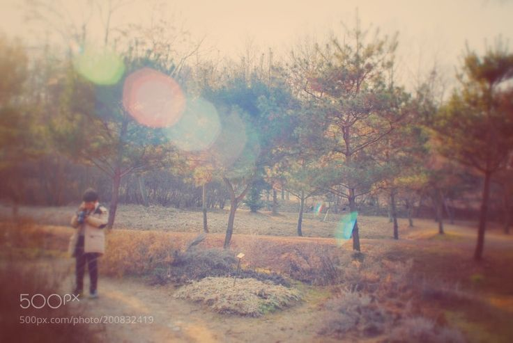 Osan Water Fragrance Arboretum by Hippo_sweat_is_red