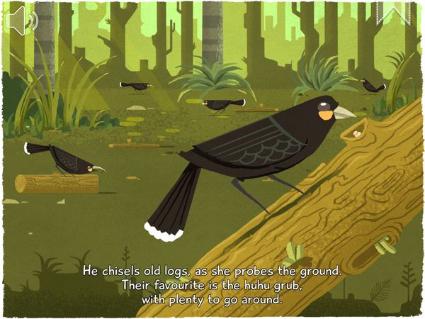 Here is a frame grab of page 2 from the iPad version of 12 Huia Birds. At this stage, the art work has been completed and production of the app is centered around the finessing of audio elements and getting the app ready to upload to Apple App Store.